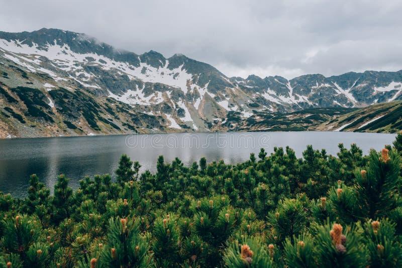 一个山湖在一阴天,五个湖塔特拉山脉国家公园,波兰Dolina Pieciu Stawow Polskich谷的看法  免版税库存图片