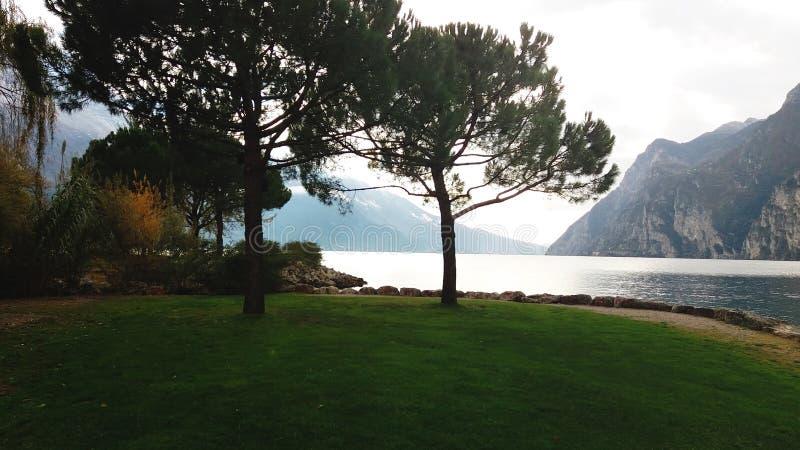 一个山湖在早期的秋天,常青松树,绿草的美丽的景色 免版税库存图片
