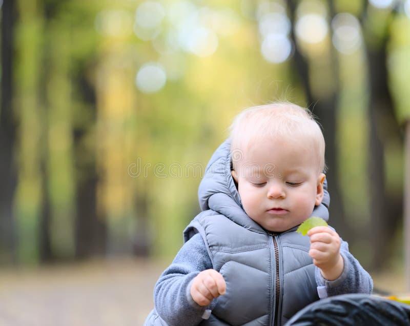 一个岁男婴在秋天公园 免版税图库摄影