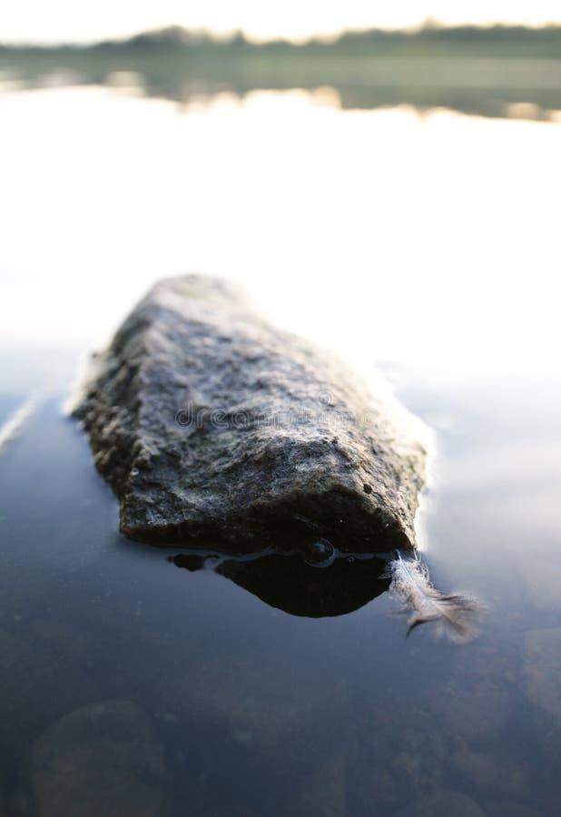 一个岩石和和一根羽毛在湖中间 免版税库存照片