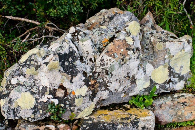 一个巨大的五颜六色的岩石 库存图片