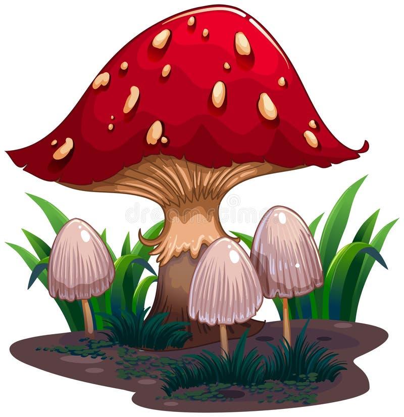 一个巨大的蘑菇的图象 库存例证