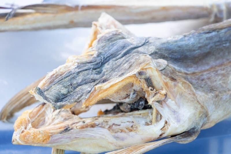 一个干鳕鱼头的特写镜头,意大利烹调专业  图库摄影