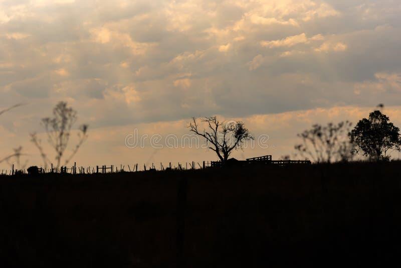 一个平衡的末端的风景和剪影在乡下01 免版税库存照片