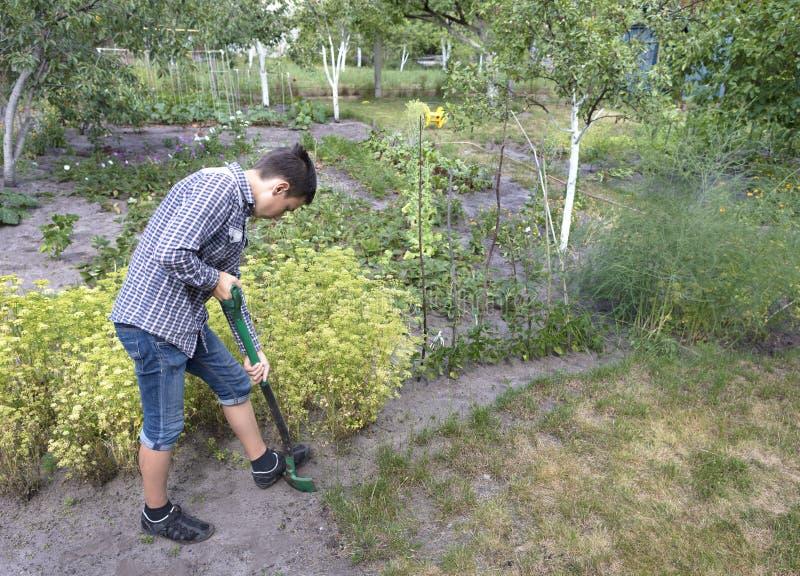 一个年轻人在庭院里做季节工作 免版税库存照片