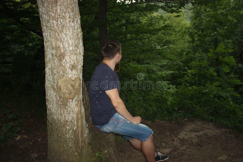 一个年轻人在森林里坐自然 免版税库存照片