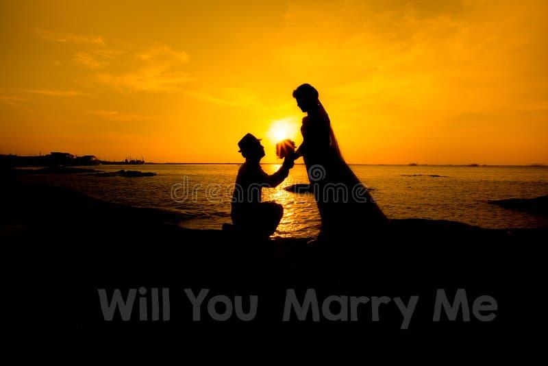 一个年轻人的剪影,下来一个膝盖和拿着的花束,提议对他的女朋友 您与我结婚图象 库存照片