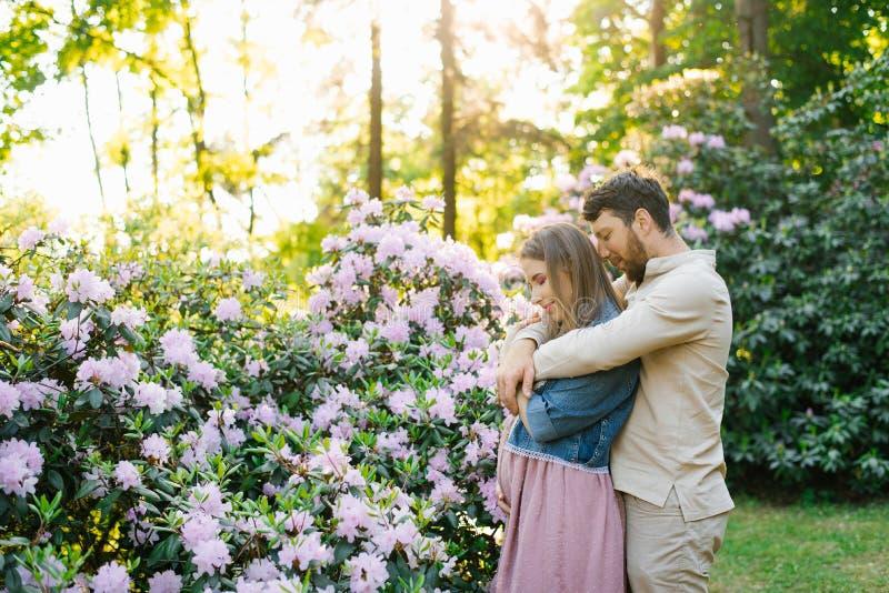 一个年轻家庭在一个春日等待婴孩在一个开花的庭院里 丈夫拥抱他的妻子从后面,妇女举行 库存图片