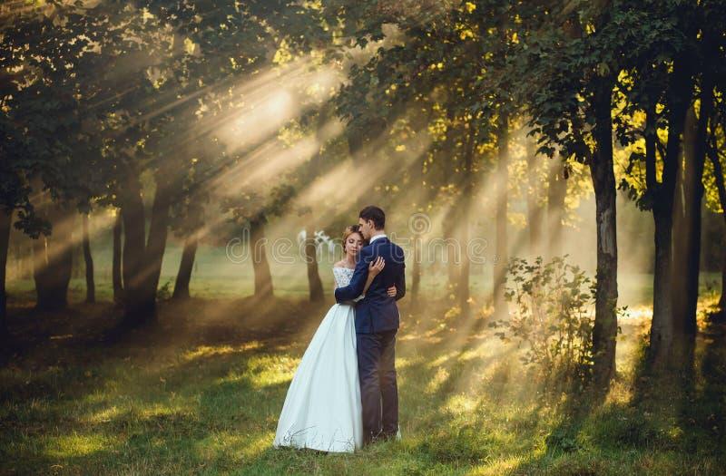 一个年轻新娘的逗人喜爱和镇静照片美好的长的白色的一件婚姻的壮观的礼服和新郎严密的 免版税库存照片