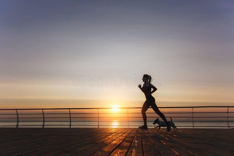 一个年轻美丽的运动女孩的剪影有长的白肤金发的ha的 库存图片
