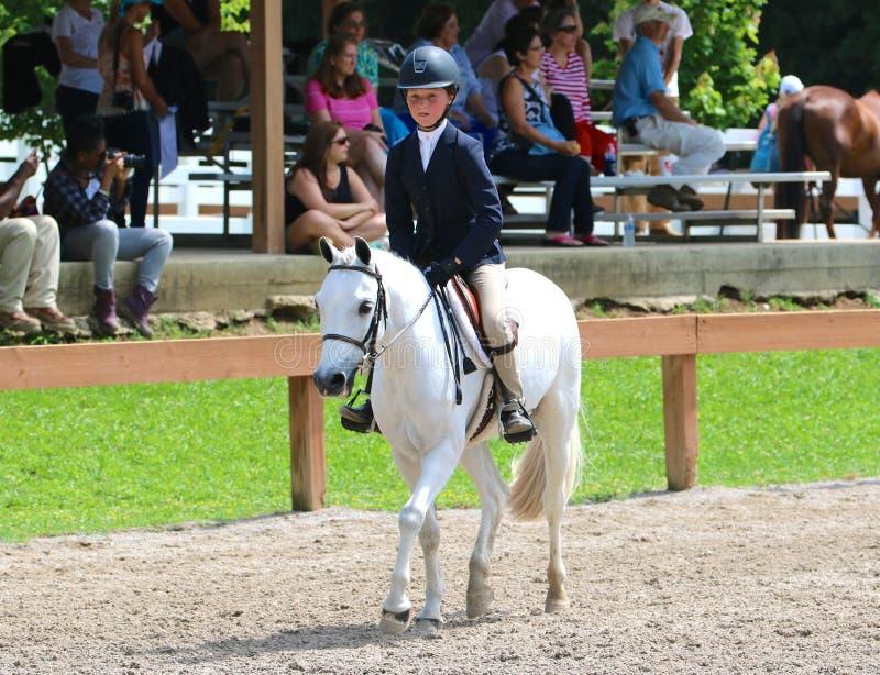一个幼儿骑在Germantown慈善马展示的一匹马 库存图片
