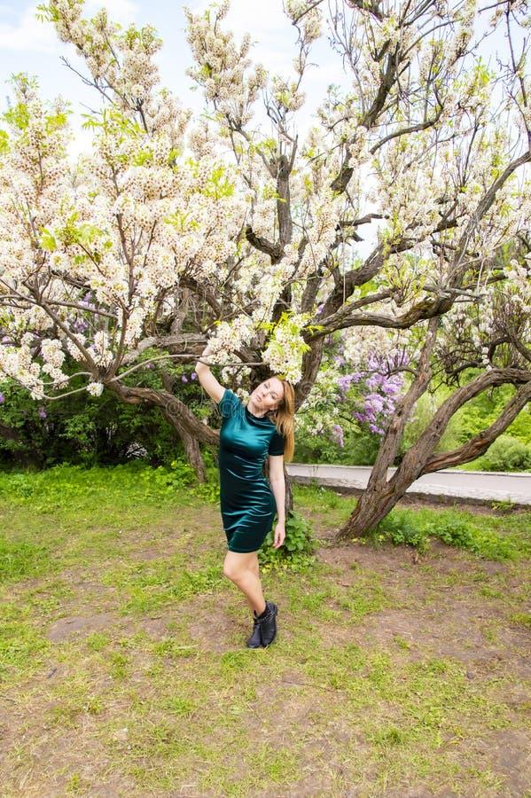 一个开花的树杏子的背景的女孩 免版税库存图片