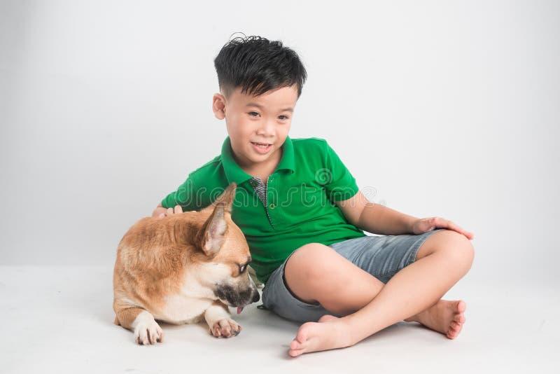 一个快乐的小男孩的画象获得与威尔士小狗狗的乐趣在地板上在演播室 库存图片