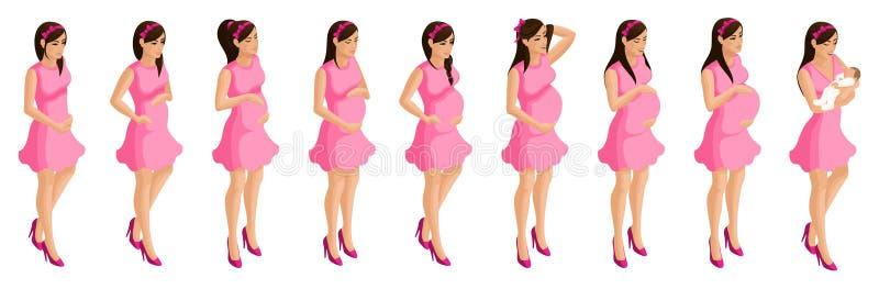一个怀孕的女孩、怀孕阶段和时间的Isometry  孩子、母亲和孩子,幸福家庭的诞生 皇族释放例证