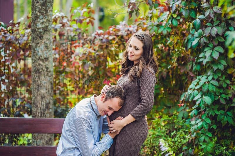 一个怀孕的少妇和她的丈夫 一个愉快的家庭站立在红色秋天树篱的,听未来的父亲听见那在t 免版税库存图片