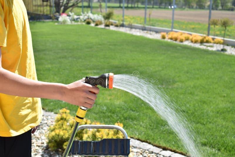 一个成人人在绿色庭院里浇灌不同的植物 免版税图库摄影