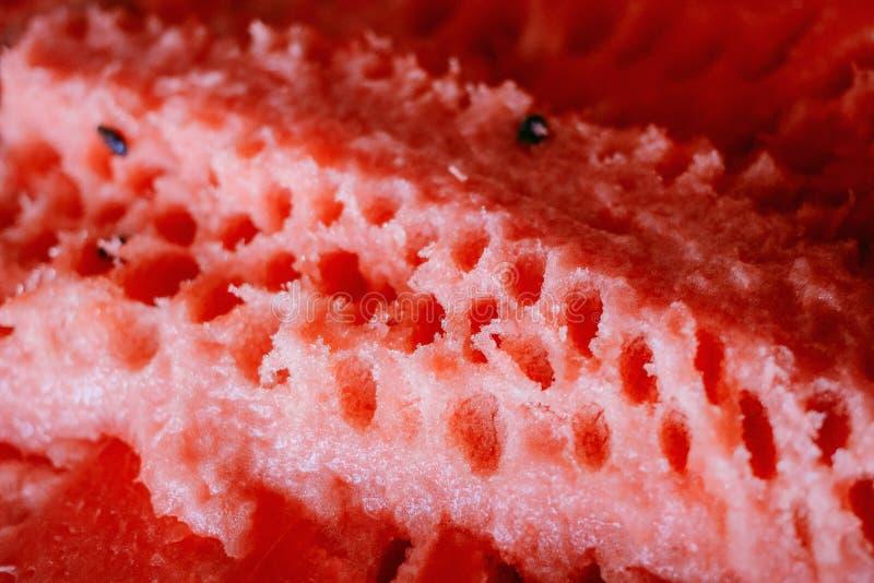 一个成熟西瓜的骨肉 免版税库存照片