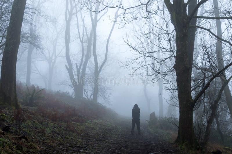 一个戴头巾图身分的一个鬼的剪影在一个有雾的冬天森林里 免版税库存照片