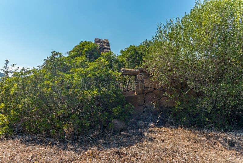 一个房子的废墟看法在可西嘉岛 免版税库存照片