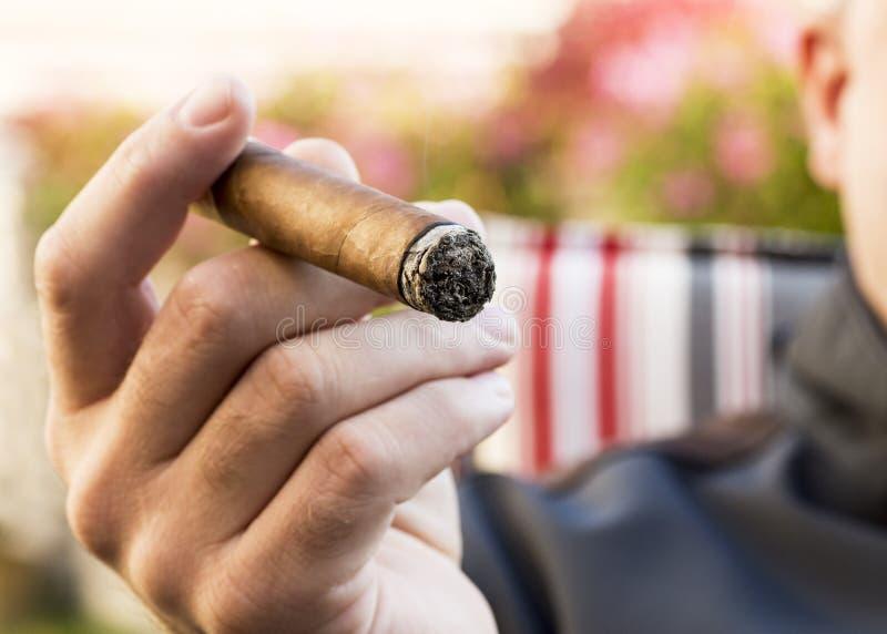 一个抽烟的人的手的细节拿着灼烧的雪茄与的 库存图片