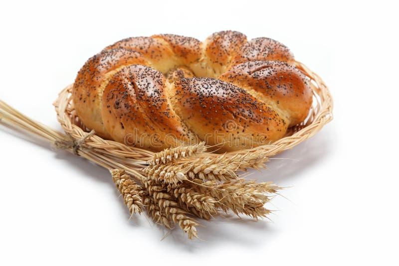 一个新鲜的面包洒与罂粟种子。 免版税图库摄影