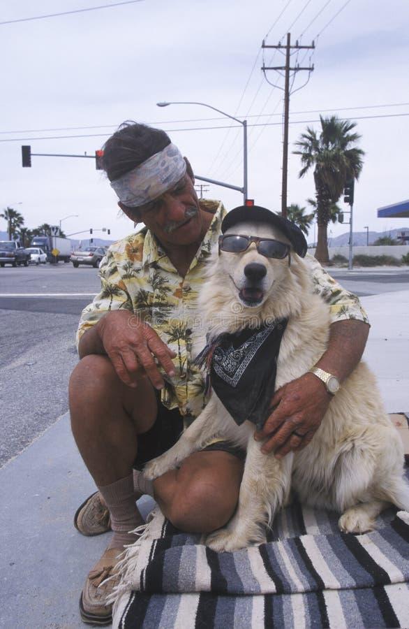 一个无家可归的人和他的狗 库存图片