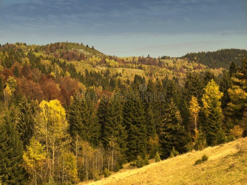 一个晴天的山、领域和谷的秋天风景在中央波斯尼亚 免版税库存照片