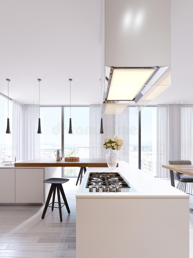 一个最低纲领派样式的技术现代厨房与装置的新一代 滚刀,有启发性玻璃敞篷,天花板 库存例证