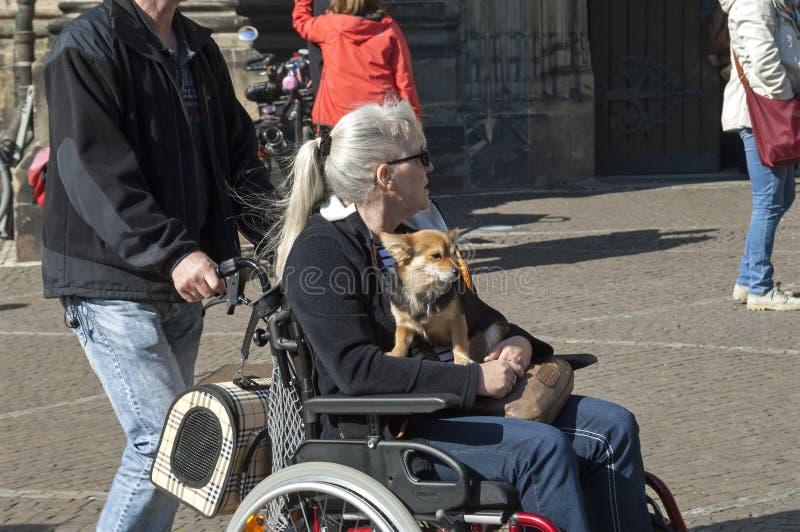 一个有同情心的志愿者给一个老人每好天儿 免版税库存照片