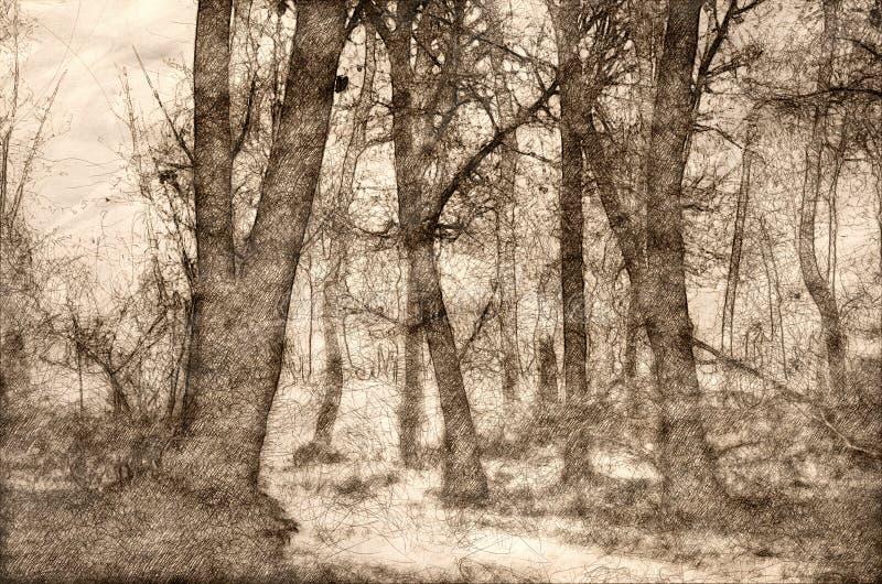 一个有薄雾的森林的剪影在一个冷的沈默早晨 皇族释放例证