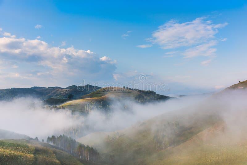 一个有雾的早晨的美好的山风景与树和云彩的 免版税库存图片