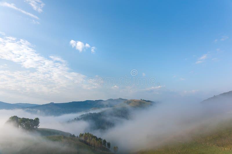 一个有雾的早晨的美好的山风景与树和云彩的 库存图片