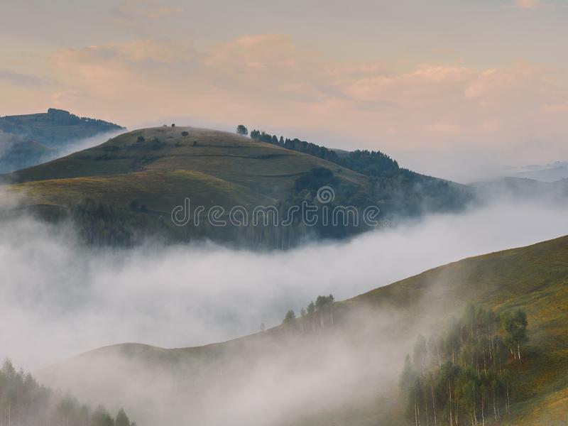 一个有雾的早晨的美好的山风景与树的在小山 免版税库存图片