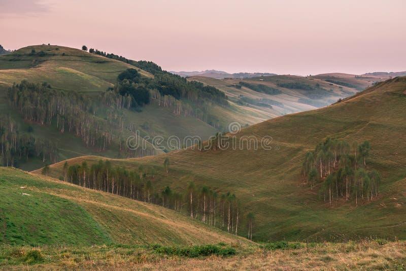 一个有雾的早晨的美好的山风景与树的在小山 免版税图库摄影