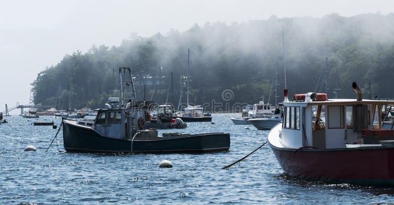 一个有雾的港口在缅因 免版税库存图片