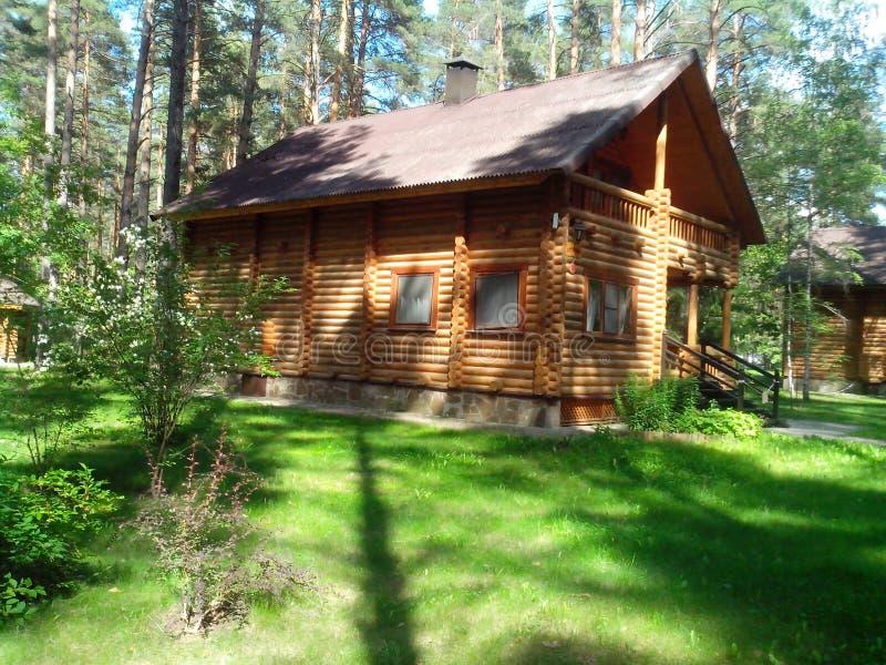 一个木房子在杉木森林里 库存图片