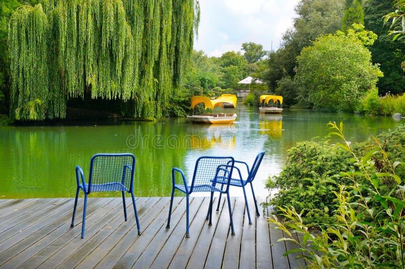 一个木码头是在一个湖的一个平台在城市公园 库存图片