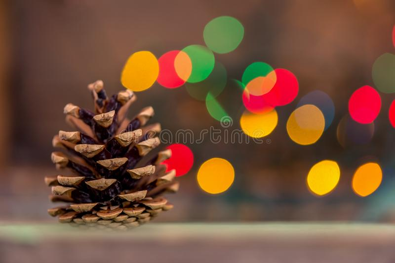 一个杉树锥体的特写镜头与光的在背景中 免版税图库摄影