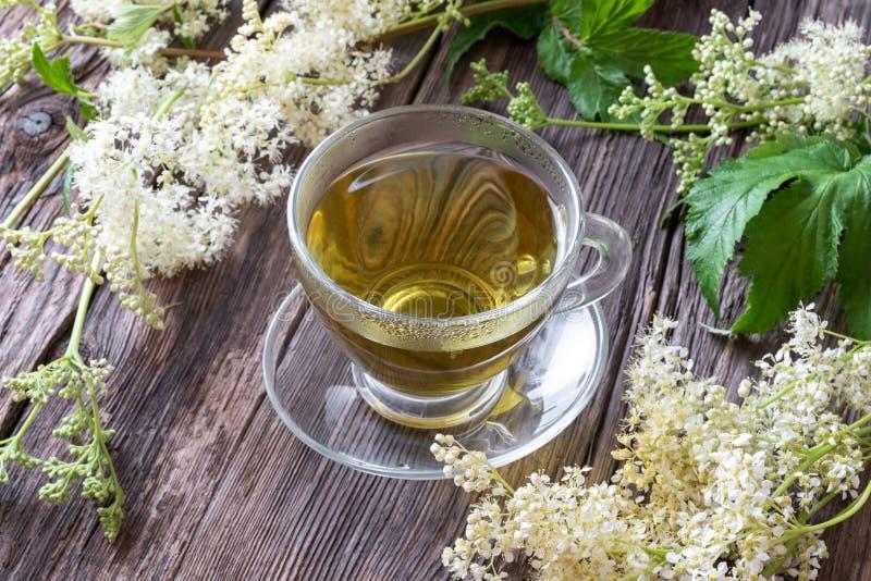 一个杯子与新meadowsweet的清凉茶 免版税库存照片