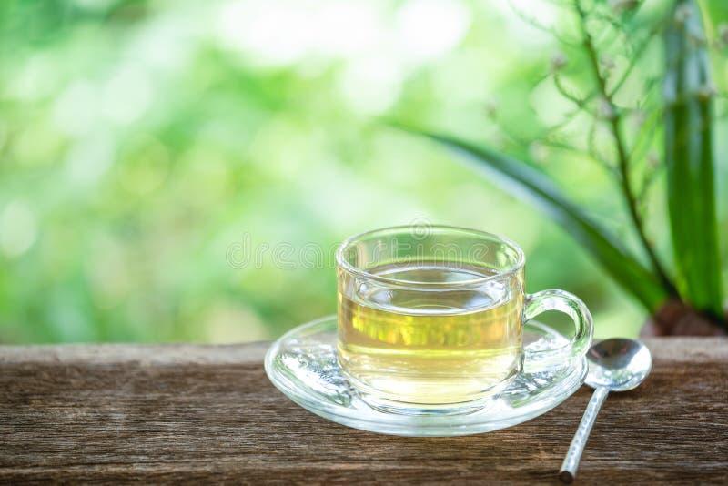 一个杯子在木桌上的绿茶与叶子和自然本底,饮料为放松 库存图片