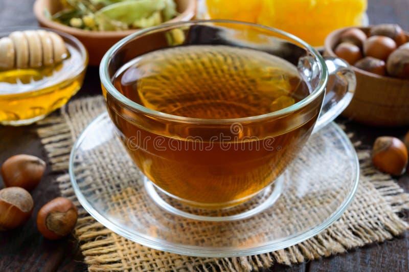 一个杯子新鲜的芬芳清凉茶用蜂蜜和榛子在黑暗的木背景 免版税库存照片