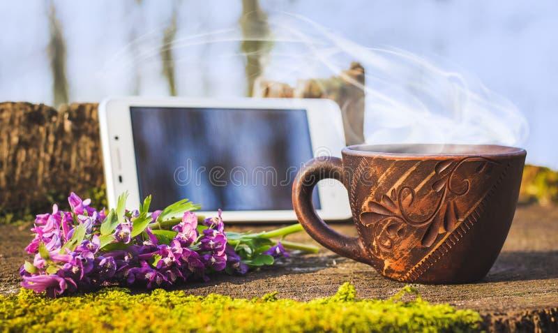 一个杯子热的咖啡在一个树桩的森林在电话和春天花旁边 在nature_的活跃休息 免版税库存图片