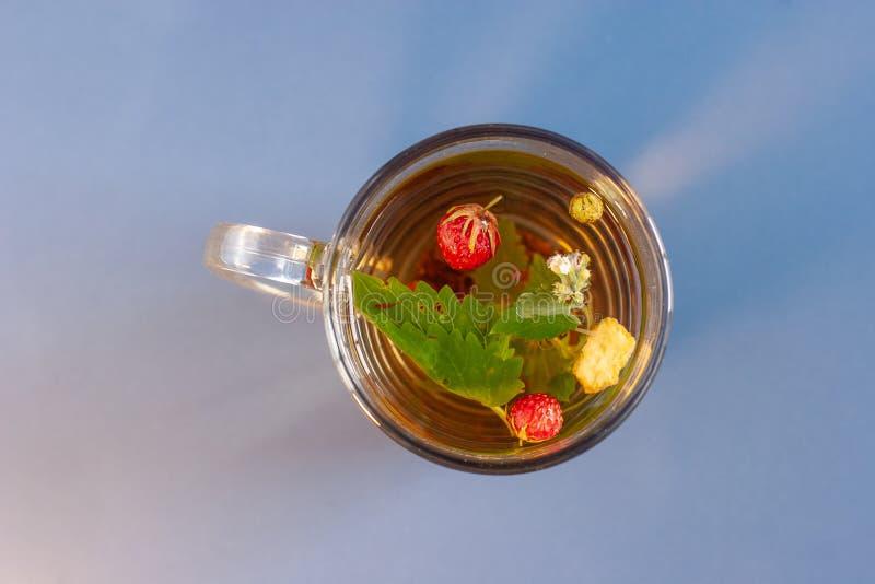 一个杯子的静物画在蓝色瓷砖的清凉茶有尘土纹理的 草莓叶子和莓果在杯子浮动 免版税库存照片