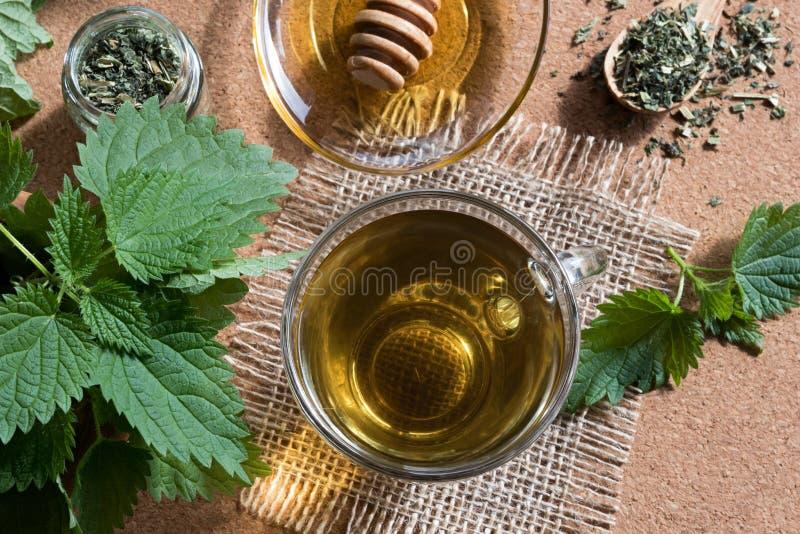 一个杯子荨麻茶用新鲜和干荨麻 免版税库存图片