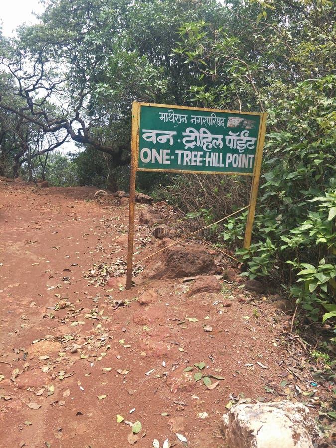 一个树小山点视图,马泰兰,孟买 库存图片