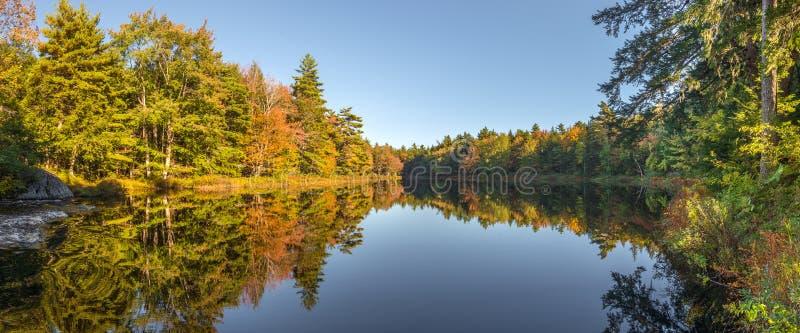 一个森林湖的全景秋天的 免版税库存图片