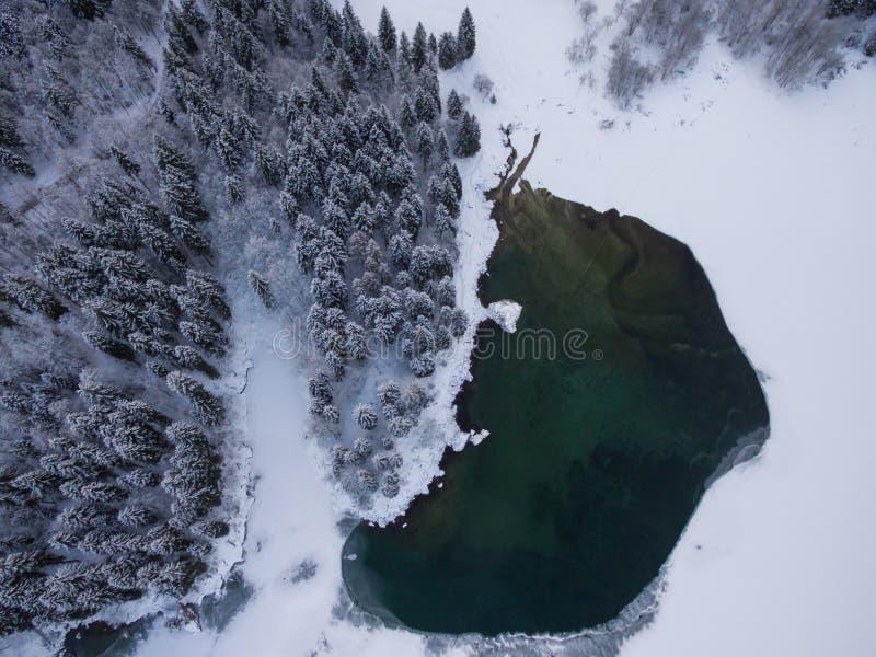 一个森林湖的鸟瞰图在寒冷冬天 免版税库存图片