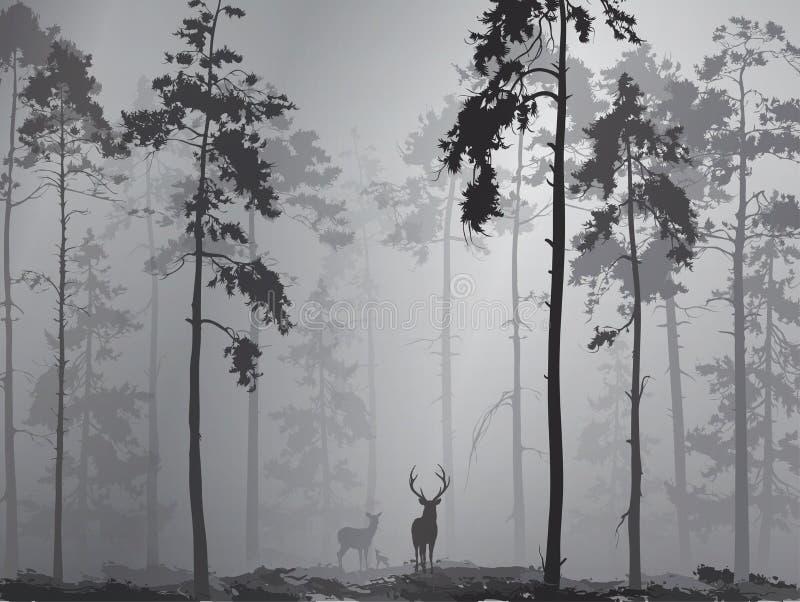 一个森林的剪影有鹿家庭的  向量例证