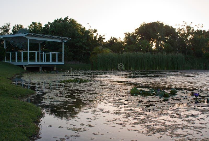 一个池塘和一个白色庭院眺望台在昆士兰,澳大利亚 图库摄影