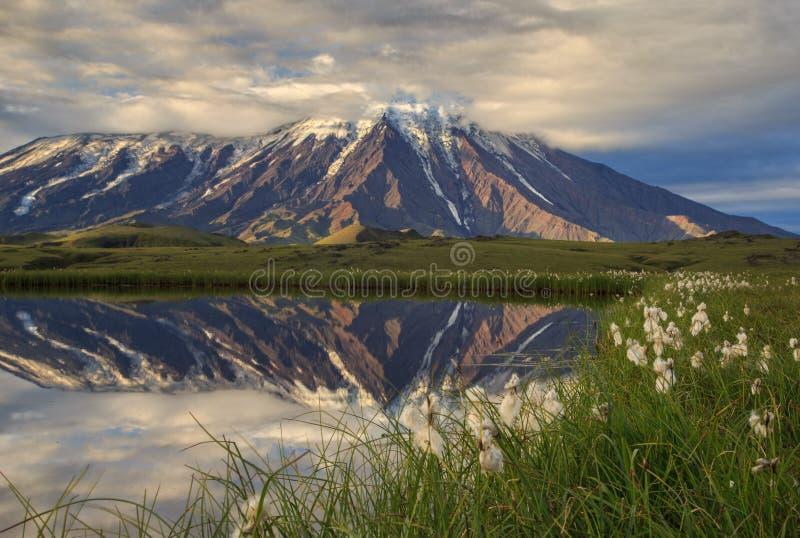 一个池塘的火山的反射在扎尔巴奇克火山活火山附近 免版税图库摄影